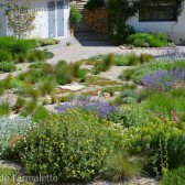creation-jardin-naturel-6